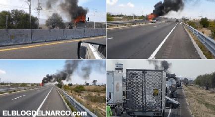 """Niegan detención de """"El Marro"""" en Guanajuato, líder del Cártel de Santa Rosa de Lima"""