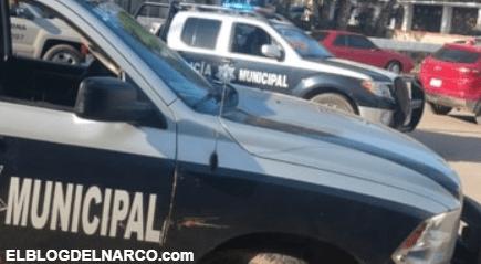 8 muertos por enfrentamientos en Sonora, Imparable la violencia en México