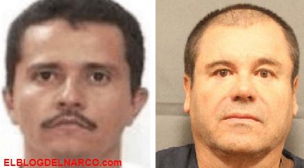 DEA decomisó 10 mdd al Cártel de Sinaloa y el Mencho del CJNG en cuarentena