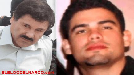 El Chapo Guzmán compró 50 mil rosas para su hijo ejecutado por el Macho Prieto