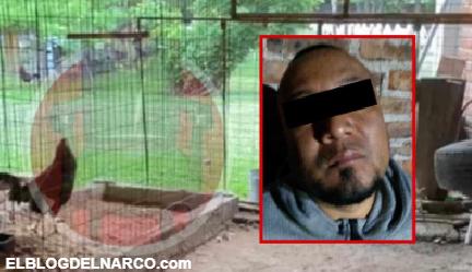 VIDEO Así es su casa por dentro en Juventino Rosas de El Marro donde criaba gallos