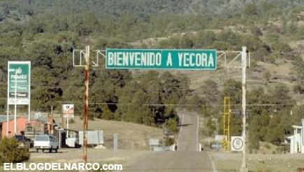 Los cuerpos llevan cuatro días tirados en las calles y ni la SEDENA ni la GN se acercan en Sonora