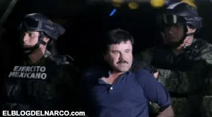 """""""El Chapo Guzmán"""", de vendedor de naranjas al principal narcotraficante de México"""
