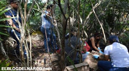 Misteriosa desaparición de albañiles en Cancún, no sería hecho aislado, el CJNG lo hacía en Jalisco