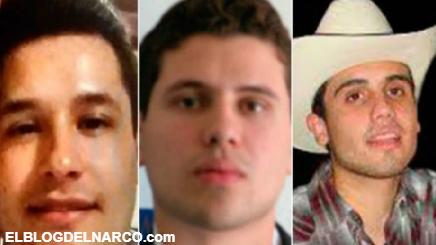 Video audio donde los Chapitos prohíben lanzar tiros al aire este Año Nuevo en Culiacán, Sinaloa