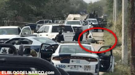 Policías abaten a tres Sicarios empecherados y con el tiro arriba en Río Bravo, Tamaulipas (VIDEO)