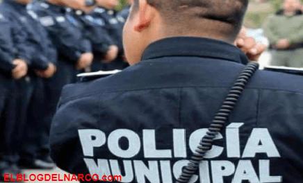 Recrudece la narcoviolencia en Tecate, Federación culpa a policía municipal