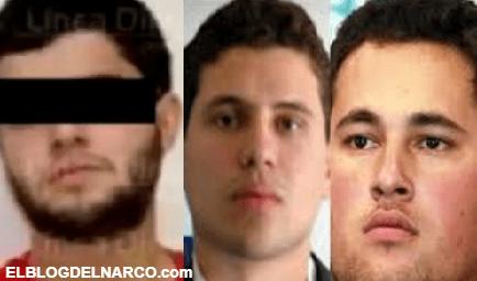 Audio de La presunta lista de objetivos en la mira del Nini, jefe de sicarios de Los Chapitos