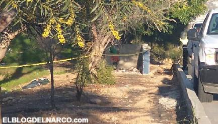 Ejecutan a otros dos en Tijuana Zona de Guerra de Los Chapitos