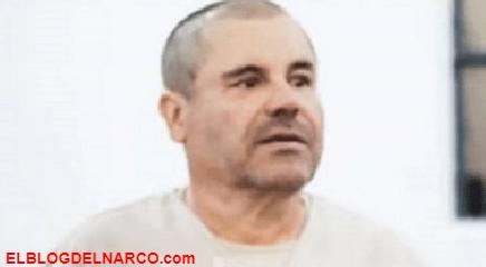 """El Chapo vive en """"condiciones crueles e inhumanas"""", solo sale a una jaula tipo perrera"""