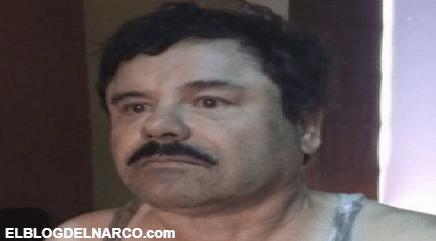 En la soledad de su celda, el Chapo Guzmán se aferra a un milagro tras la caída de Emma