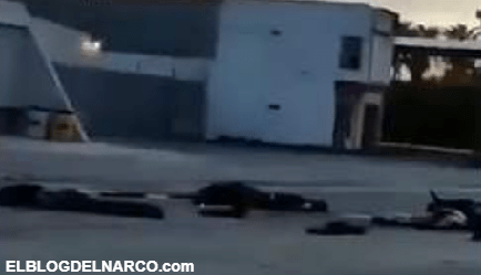 VIDEO Así quedaron 8 Sicarios tras enfrentamientos en Tamaulipas entre el CDG y el CDN