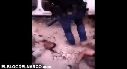 VIDEO Pistoleros del Mayo celebran su victoria junto a cadáveres de los Sicarios del Elite del CJNG