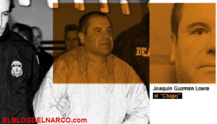 """A dos años de la condena a el """"Chapo"""" Guzmán """"todo sigue igual"""" en el Cártel de Sinaloa"""