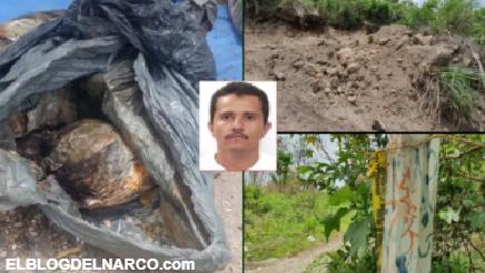El CJNG y Cártel Nueva Plaza; las 56 bolsas con restos humanos en territorio del Mencho