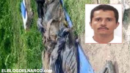 """Hallan 82 bolsas con restos humanos; tienen el """"sello"""" del Mencho y el CJNG"""