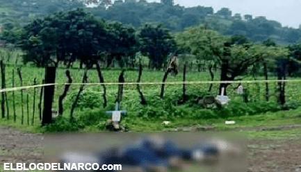 Los cuerpos de cinco hombres fueron abandonados en Tangamandapio, Michoacán