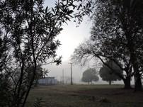Neblina inunda en Nueva Gerona006