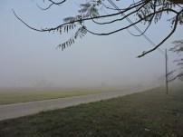 Neblina inunda en Nueva Gerona013