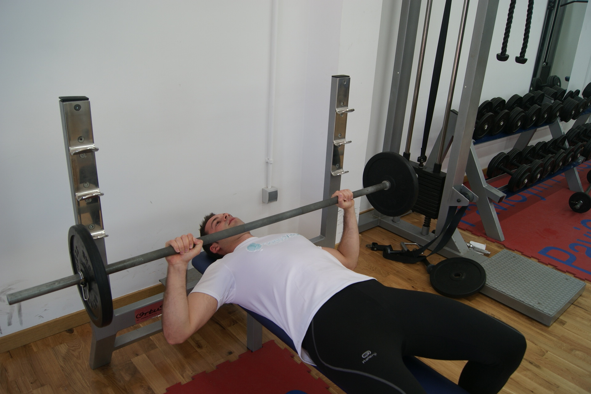Ejercicios De Musculación « El Blog De Sanus Vitae