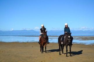 La reina de l'equitació, i el Pol