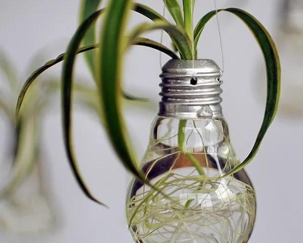 de 20 bonitas maneras de decorar tu casa con plantas de interior