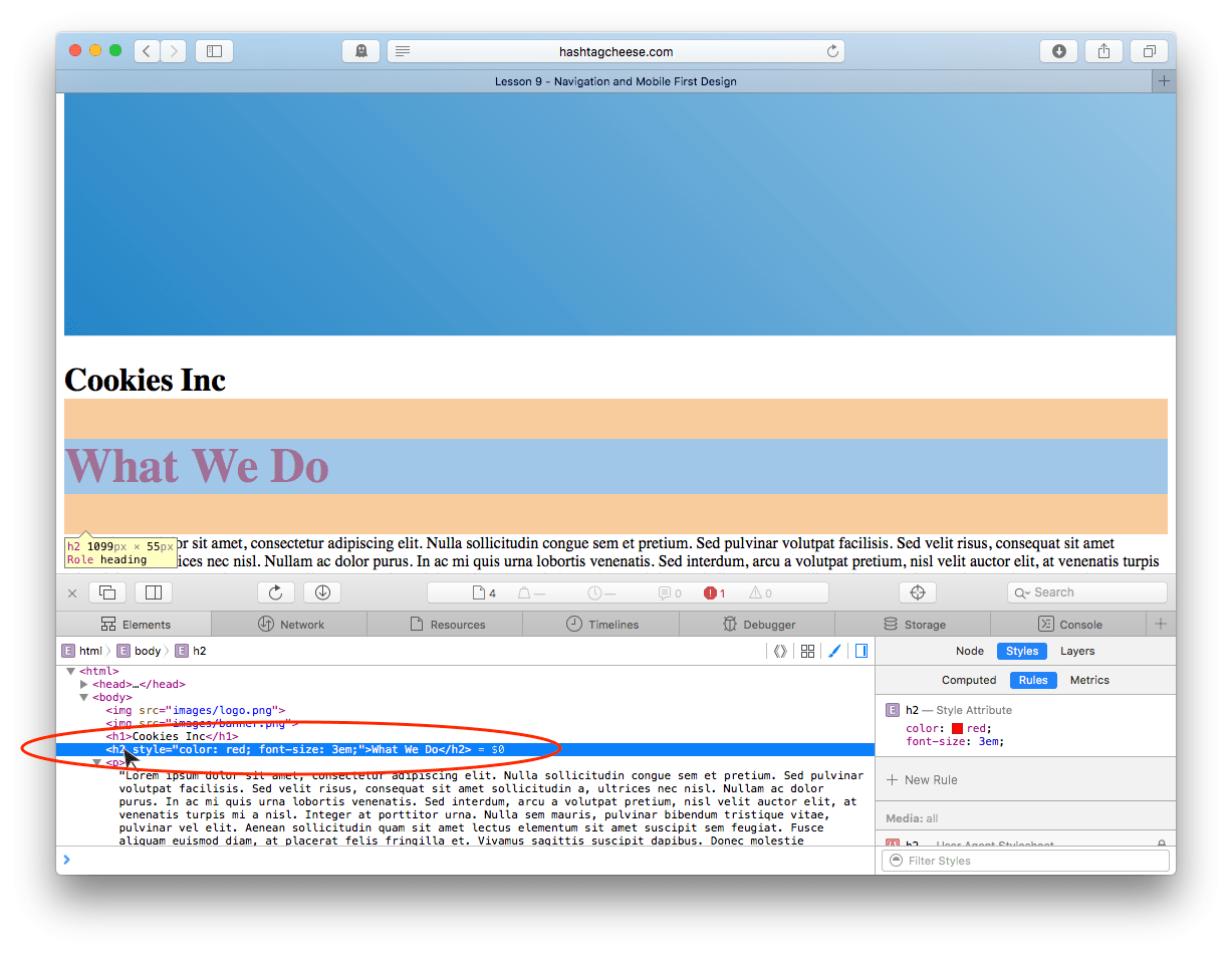 Safari Inspect Element showing inline style