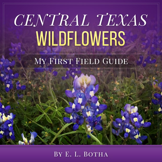 Book Cover: Central Texas Wildflowers