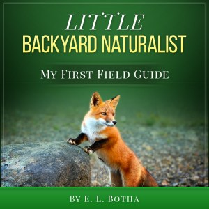 Book Cover: Little Backyard Naturalist