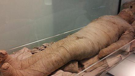 El estudio de las momias con Mercedes González