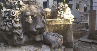 Historia de los cementerios