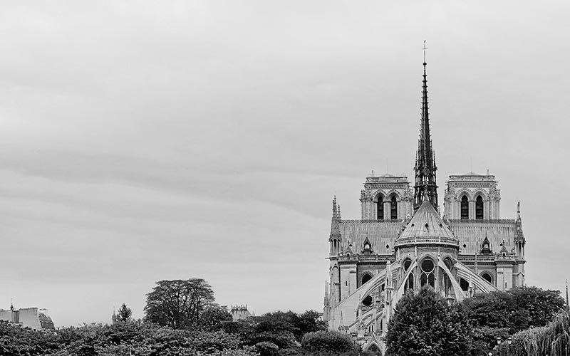 Notre Dame. Viaje al interior de la catedral