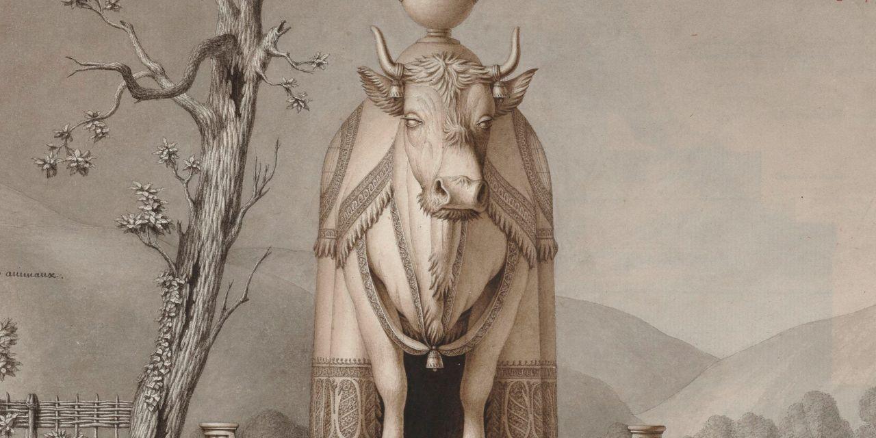 El funcionario de la vaca gigante
