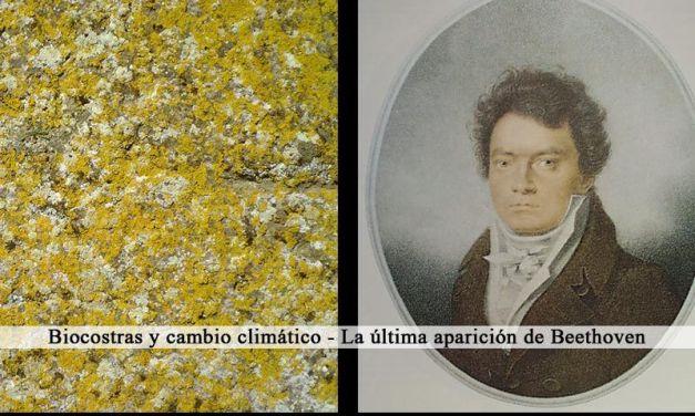 Biocostras y cambio climático – La última aparición de Beethoven