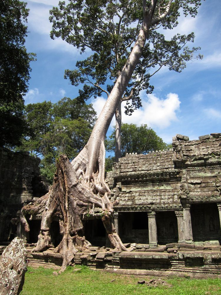 camboya-05-06-07-templos-de-angkor-10