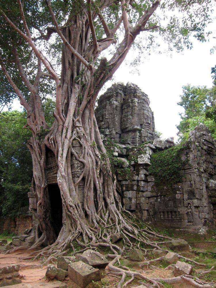 camboya-05-06-07-templos-de-angkor-17