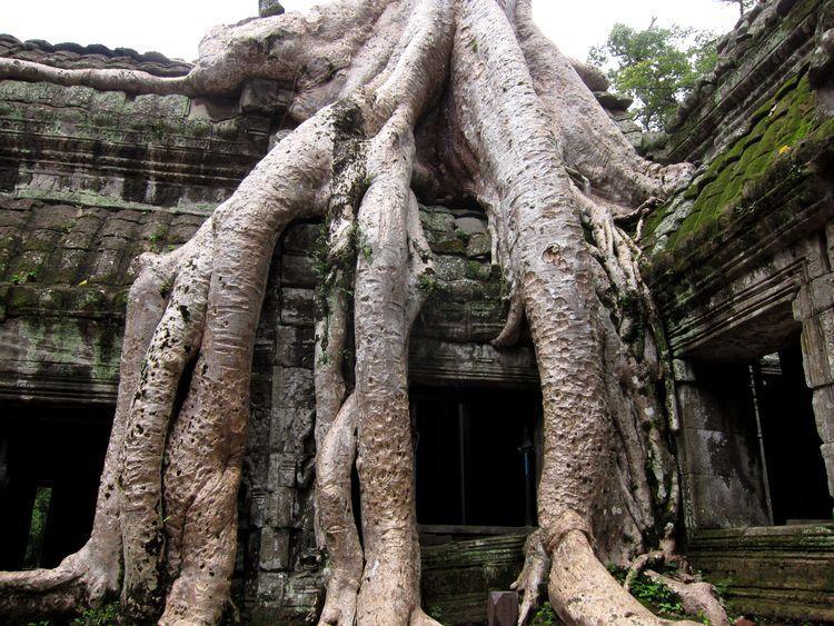 camboya-05-06-07-templos-de-angkor-75