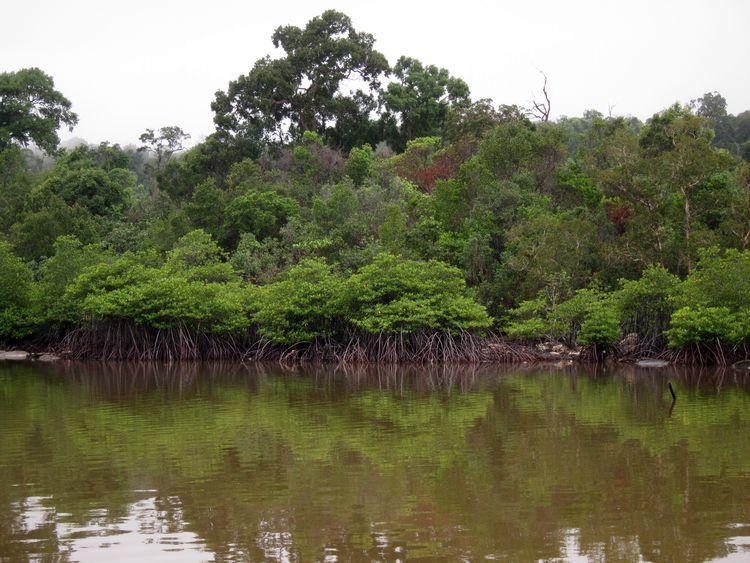 camboya-10-11-koh-rong-10