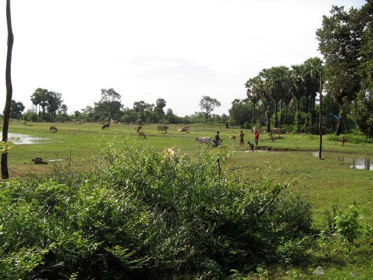 camboya-y-vietnam-12-frontera-04