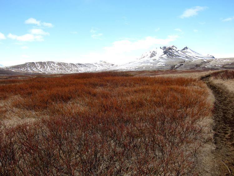 islandia-itinerario-1-semana-en-coche-61