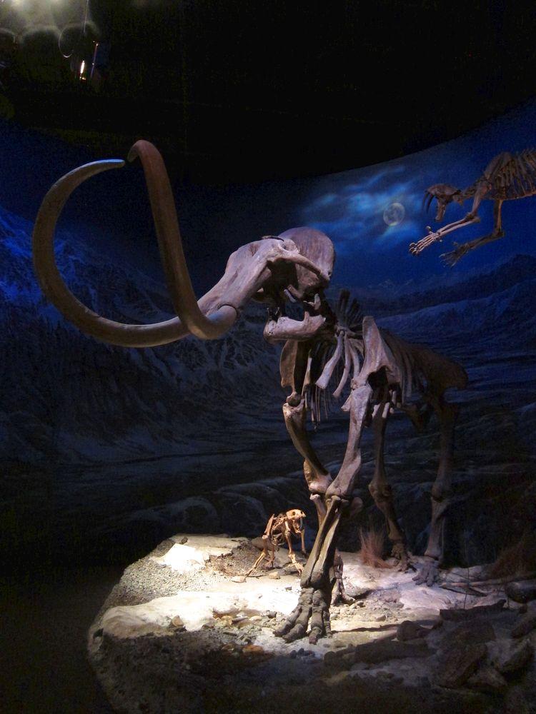 canada-02-drumheller-dinosaur-provincial-park-09