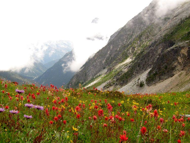 canada-07-glacier-national-park-11