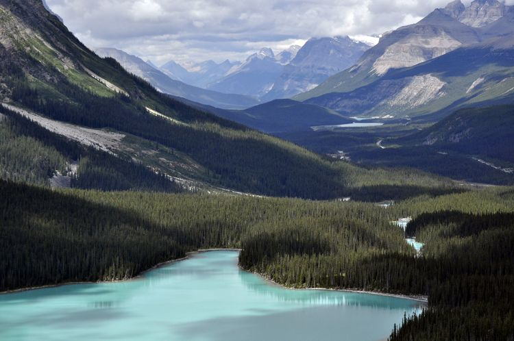 Icefields Parkway. La Carretera de los Campos de Hielo de Canadá.