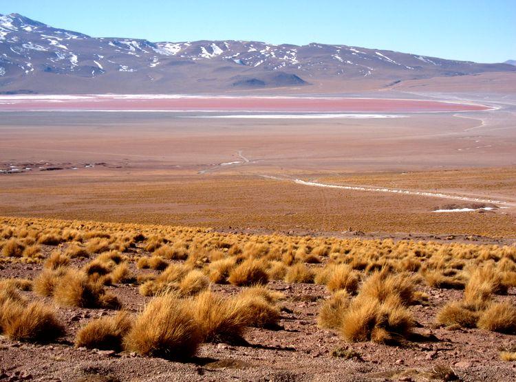 bolivia-itinerario-20-dias-33