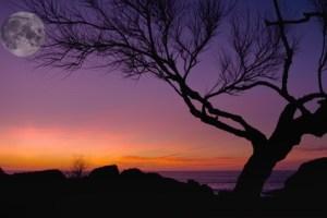 Meditación gratuita de luna llena