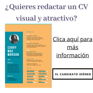 currículum visual