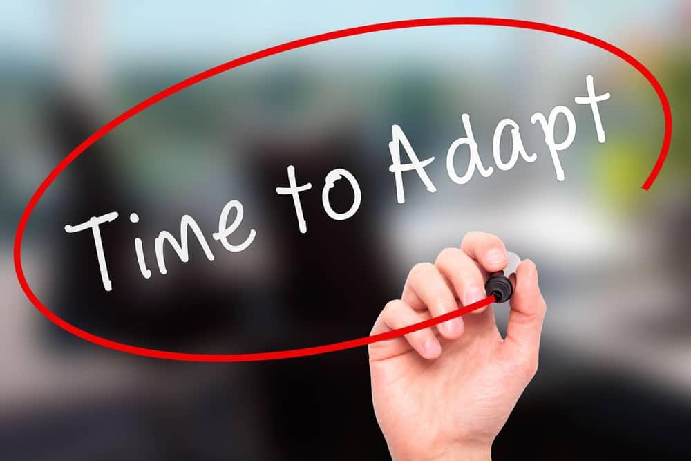 Análisis ejercicio de adaptación del currículum
