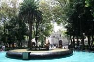 jardin centenario2