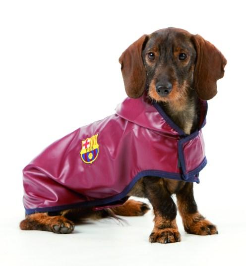 ropa de futbol para perros