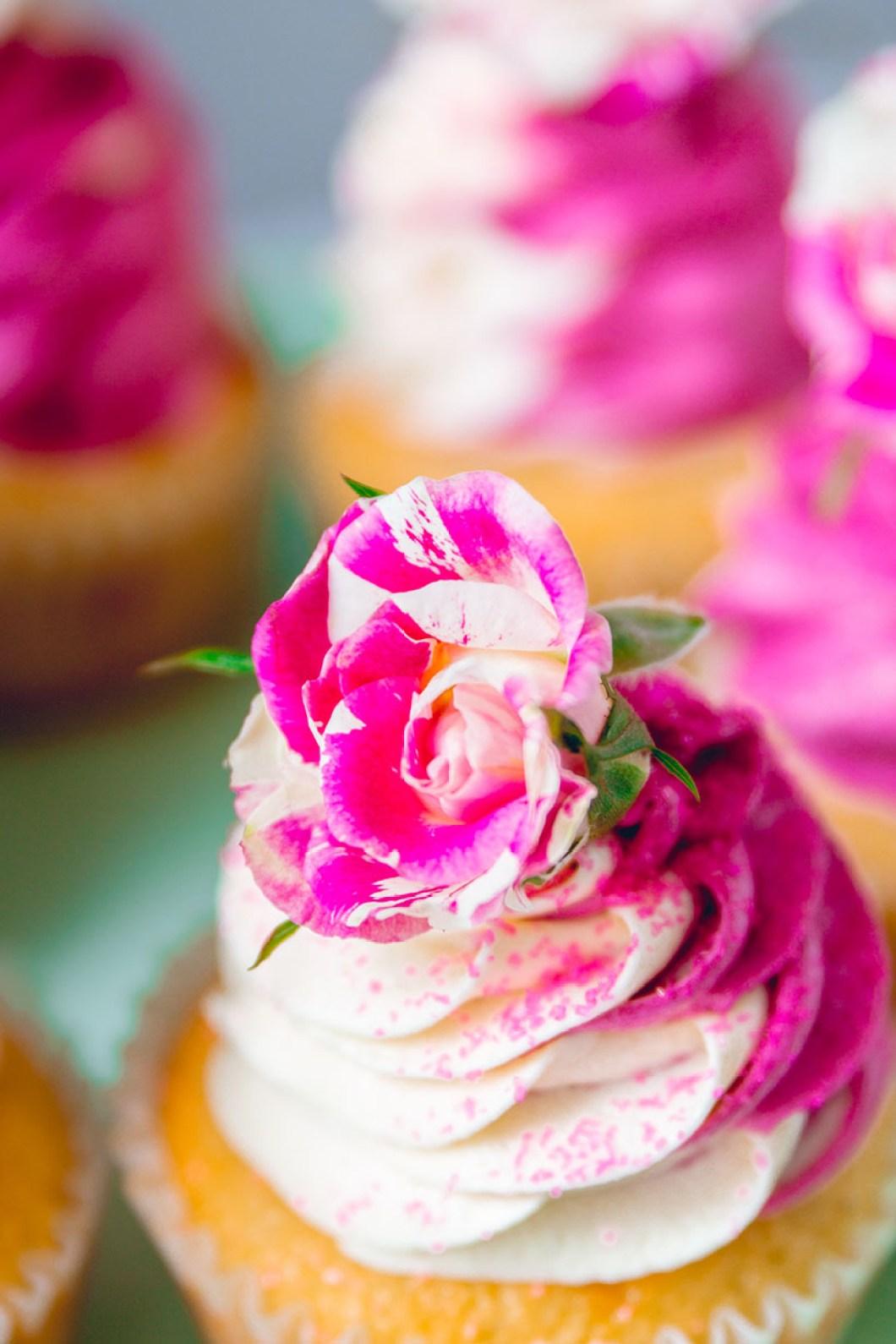 cupcakes_blackberry-8865